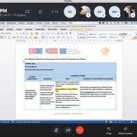 esv_eu_meeting_online (2)